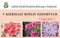 V Kiermasz Roślin Ozdobnych - 7 maja - Końskowola