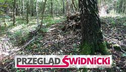Średniowieczna nekropolia kurhanowa w Podzamczu!