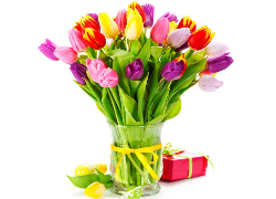 Z okazji Dnia Kobiet wszystkim Paniom pełniącym funkcje sołtysów i radnych oraz wszystkim mieszkankom Gminy Mełgiew, jak również moim koleżankom z Urzędu Gminy