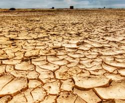 Informacja o zagrożeniu wystąpienia suszy na terenach rolniczych w Gminie Mełgiew